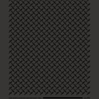moph_T-black_zoom