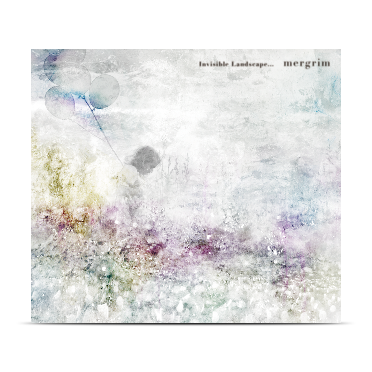Invisible Landscape / mergrim