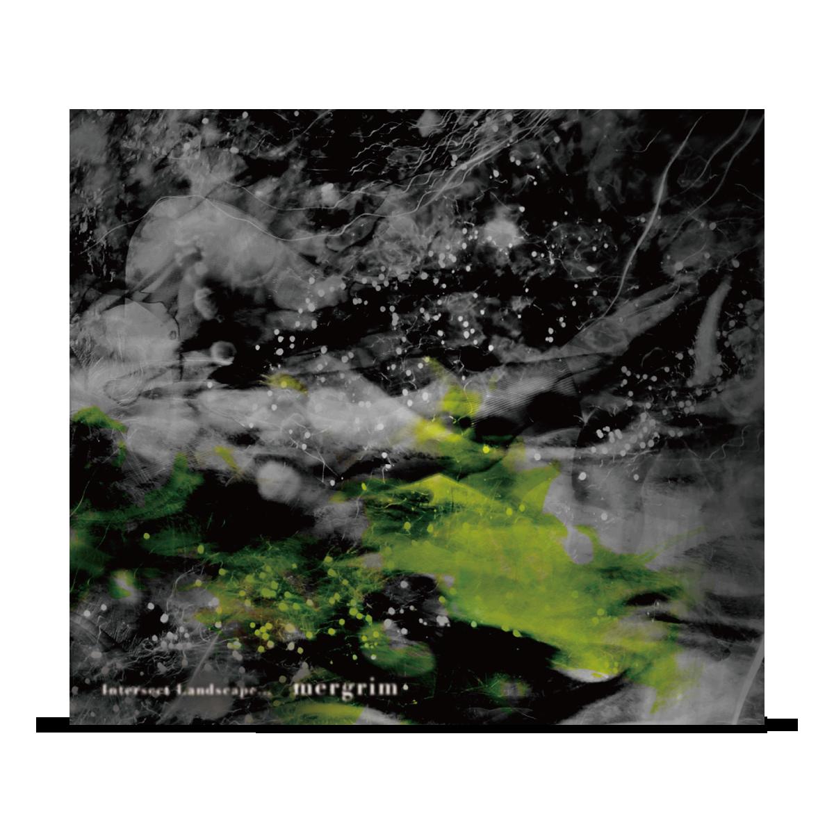 Intersect Landscape… / mergrim